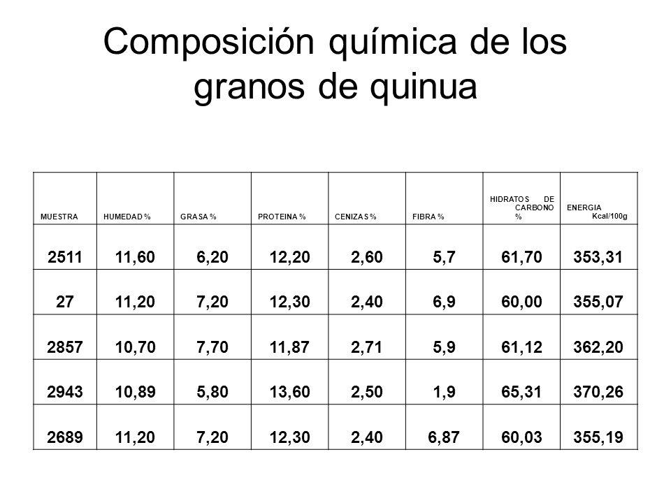 Composición química de los granos de quinua