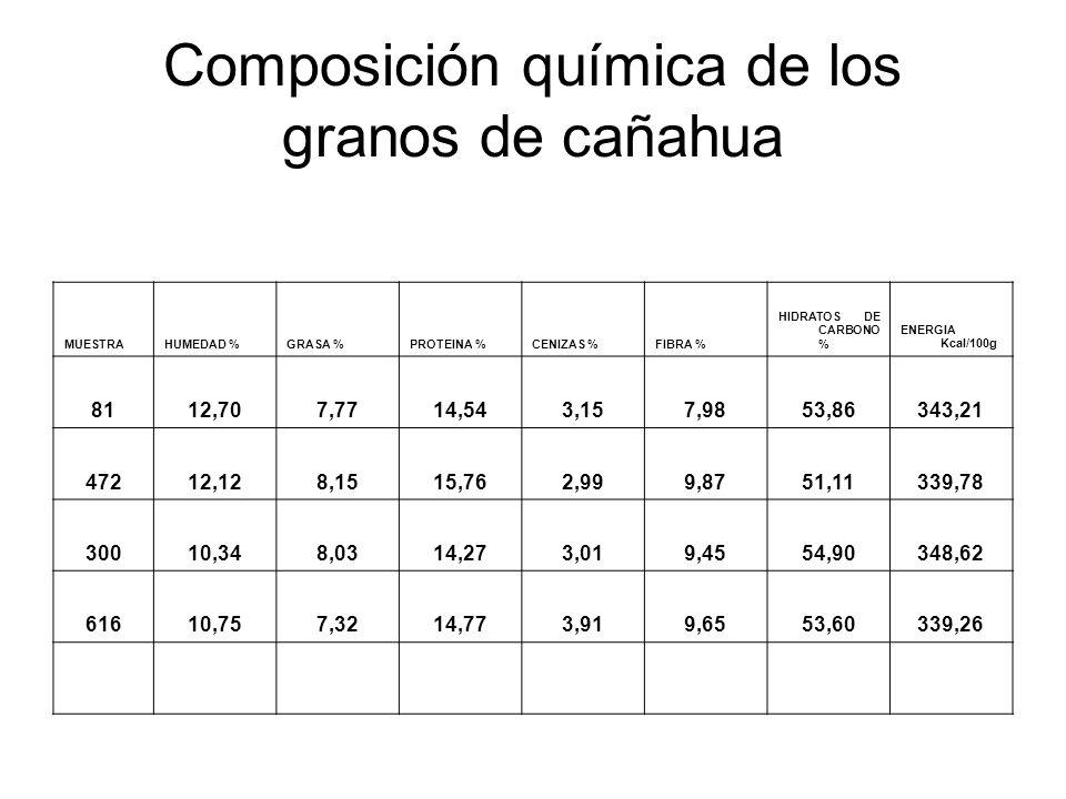 Composición química de los granos de cañahua