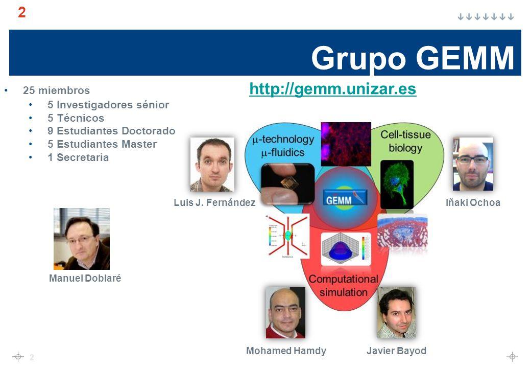 Grupo GEMM 25 miembros http://gemm.unizar.es 5 Investigadores sénior