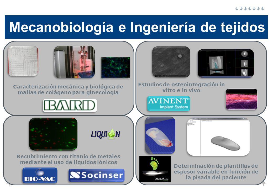 Mecanobiología e Ingeniería de tejidos
