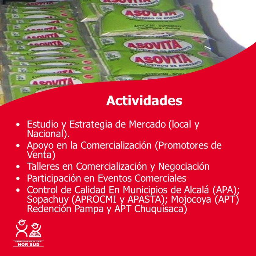 Actividades Estudio y Estrategia de Mercado (local y Nacional).