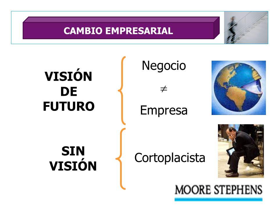 VISIÓN DE FUTURO SIN VISIÓN