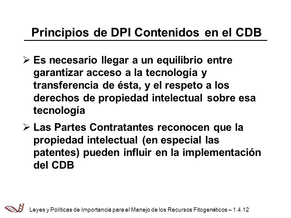 Principios de DPI Contenidos en el CDB