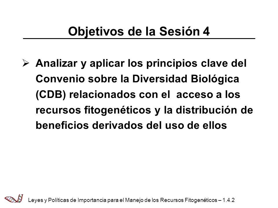 Objetivos de la Sesión 4