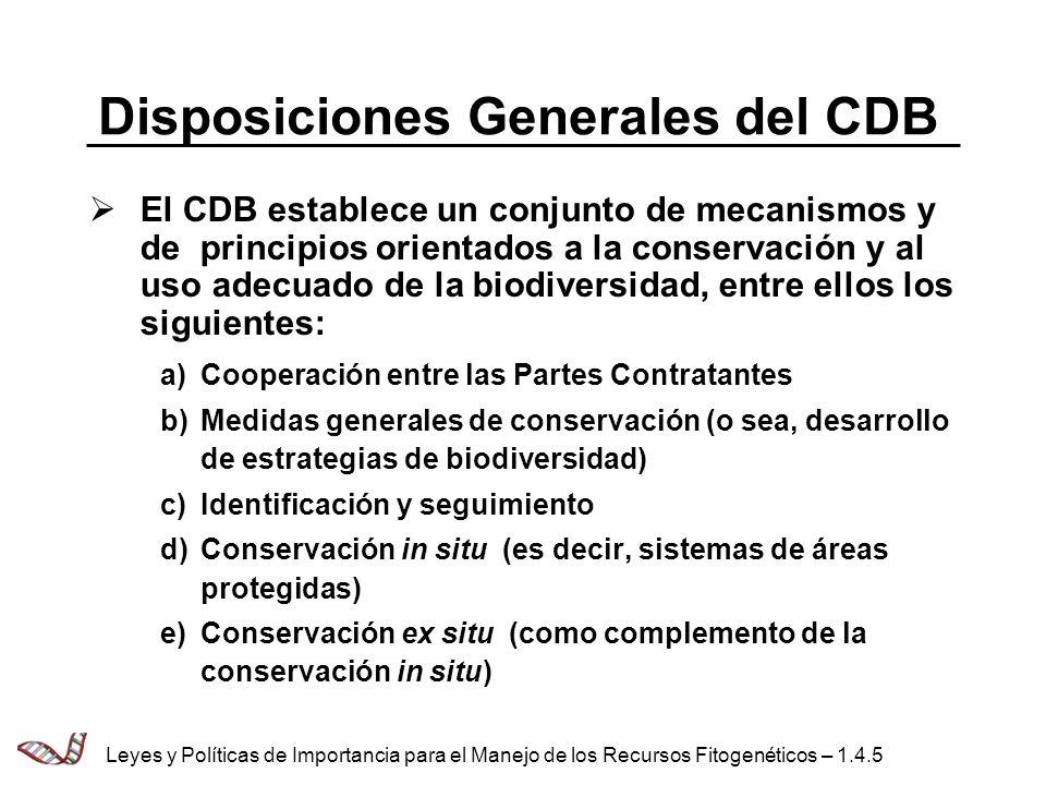 Disposiciones Generales del CDB