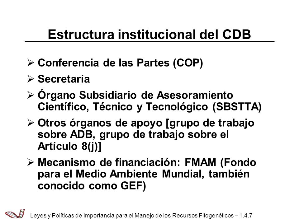 Estructura institucional del CDB