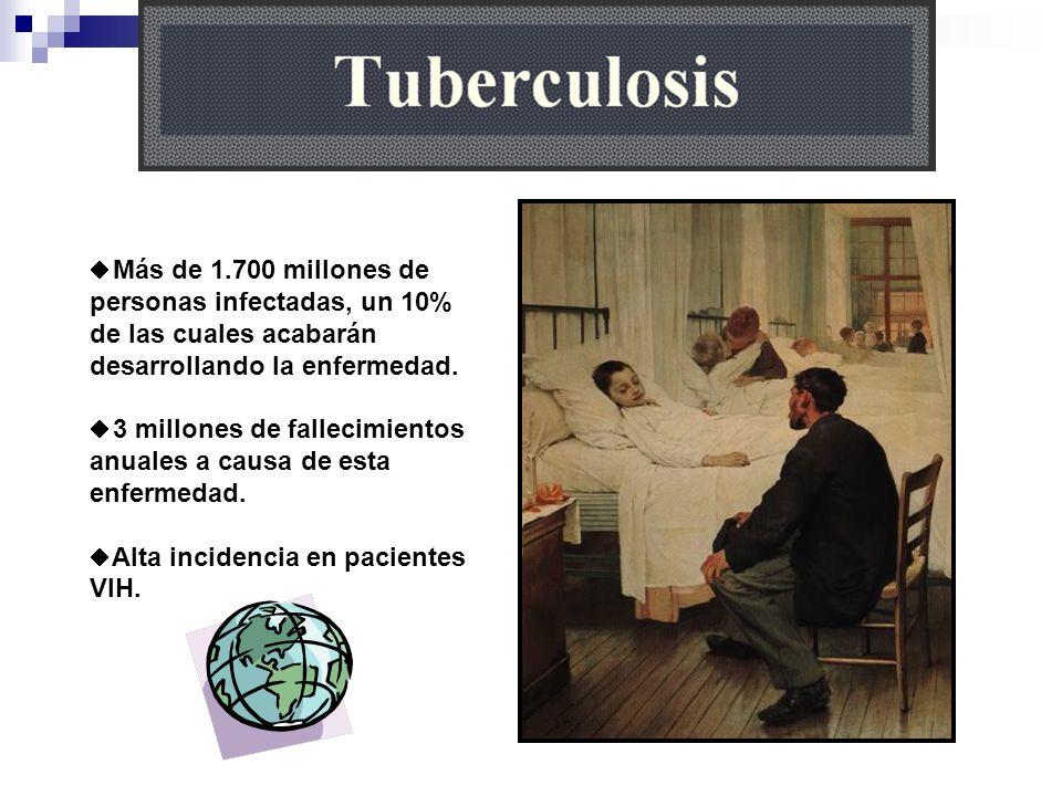 Más de 1.700 millones de personas infectadas, un 10% de las cuales acabarán desarrollando la enfermedad.