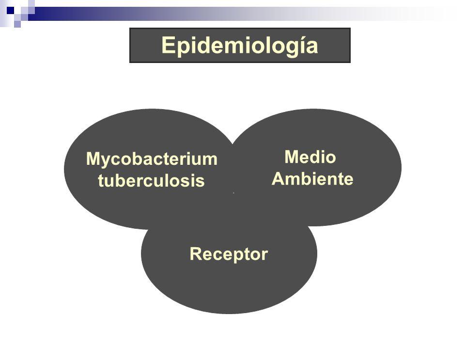 Epidemiología Mycobacterium Medio tuberculosis Ambiente Receptor