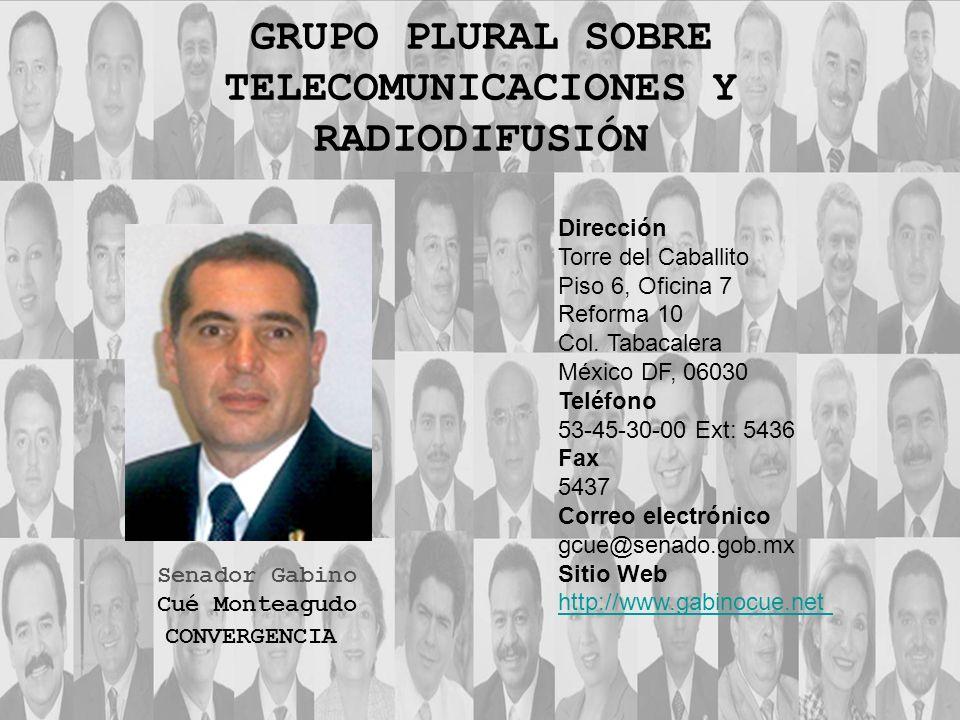 GRUPO PLURAL SOBRE TELECOMUNICACIONES Y RADIODIFUSIÓN