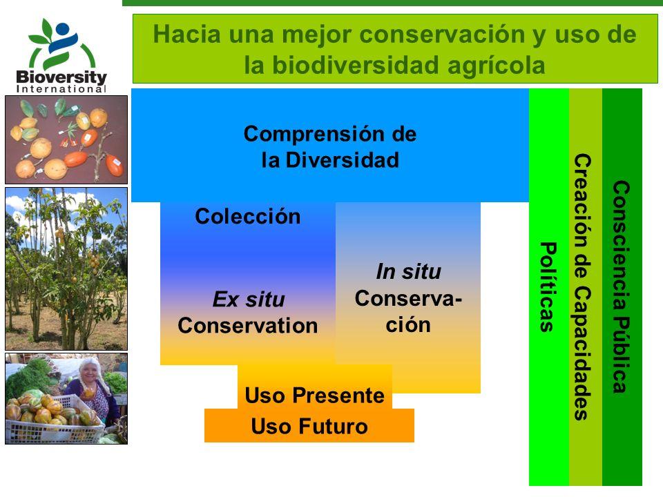 Hacia una mejor conservación y uso de la biodiversidad agrícola