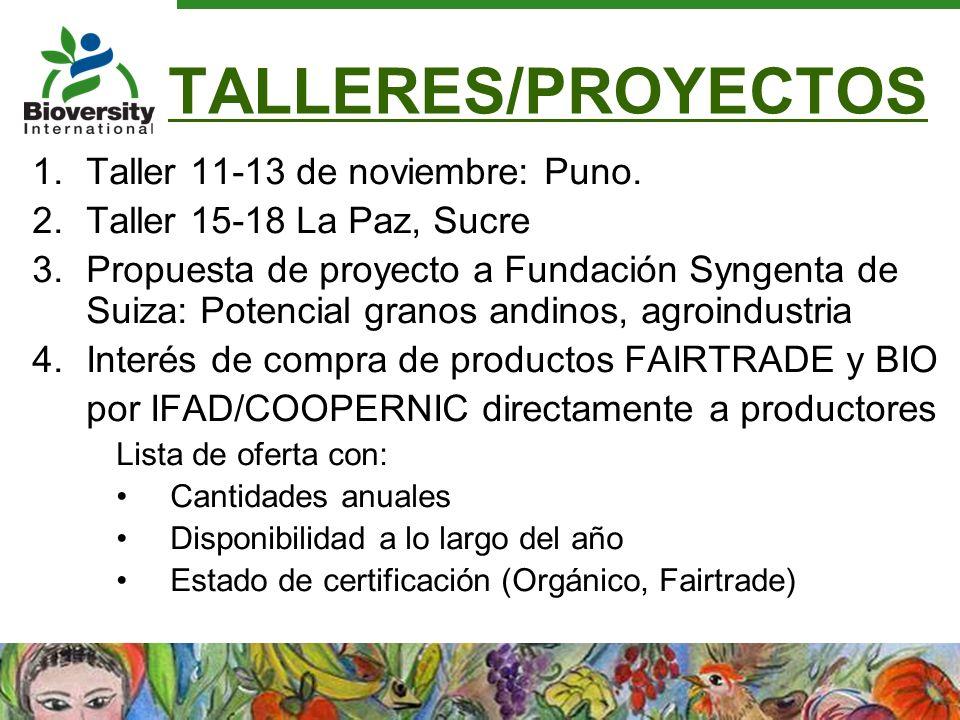 TALLERES/PROYECTOS Taller 11-13 de noviembre: Puno.