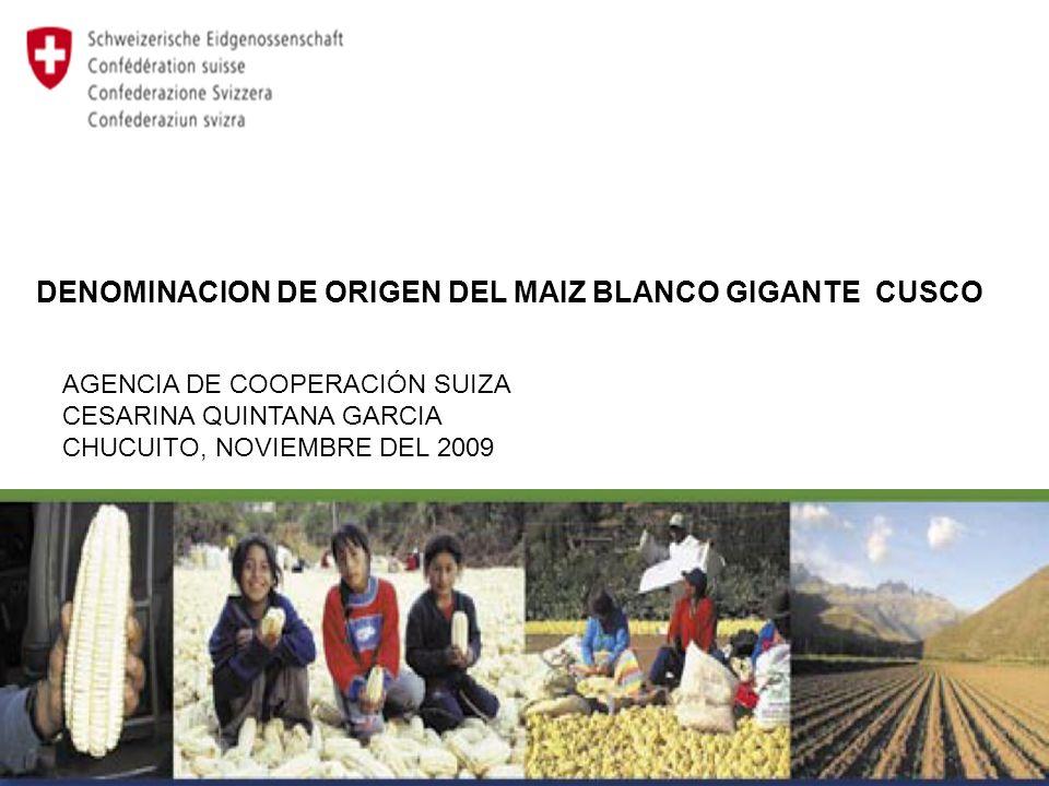 DENOMINACION DE ORIGEN DEL MAIZ BLANCO GIGANTE CUSCO