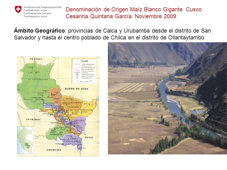 Denominación de Origen Maíz Blanco Gigante Cusco