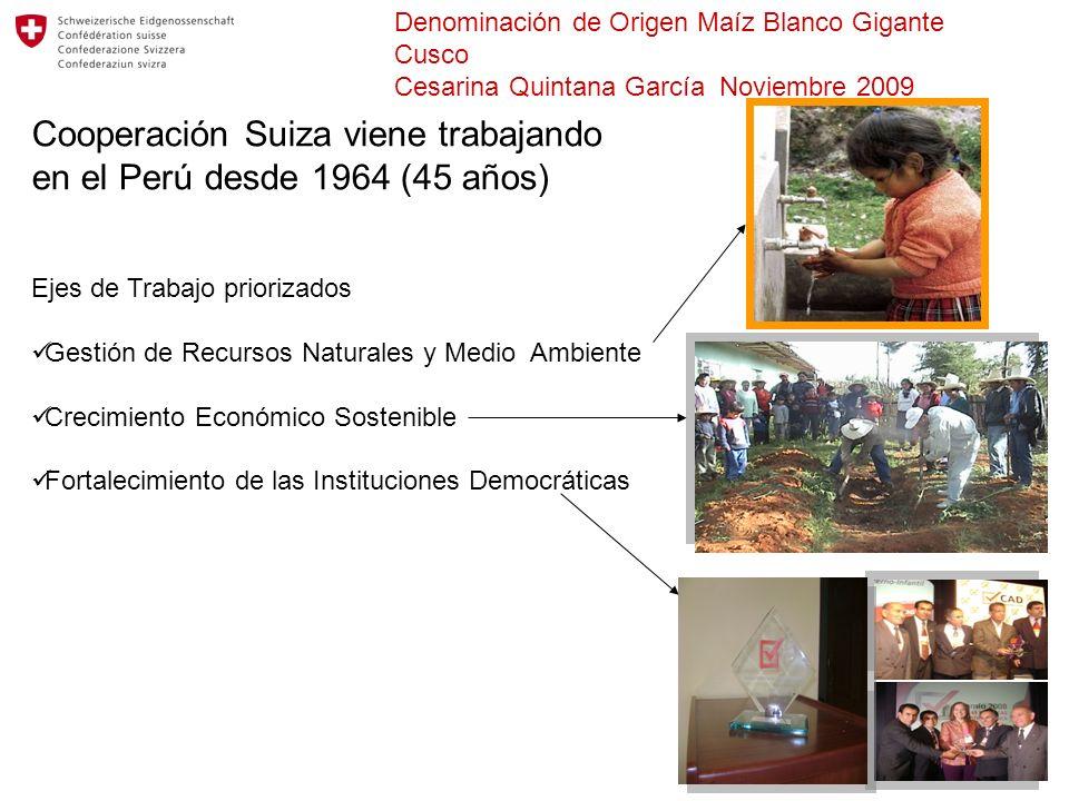 Cooperación Suiza viene trabajando en el Perú desde 1964 (45 años)