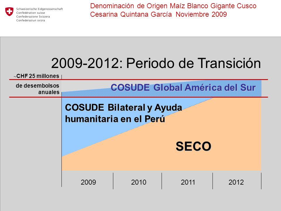 COSUDE Global América del Sur