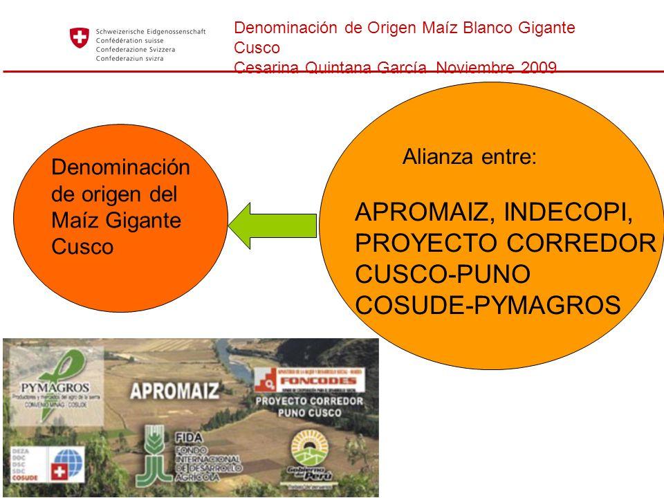 APROMAIZ, INDECOPI, PROYECTO CORREDOR CUSCO-PUNO COSUDE-PYMAGROS