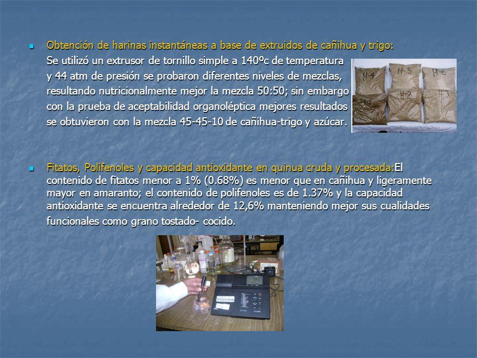 Obtención de harinas instantáneas a base de extruidos de cañihua y trigo: