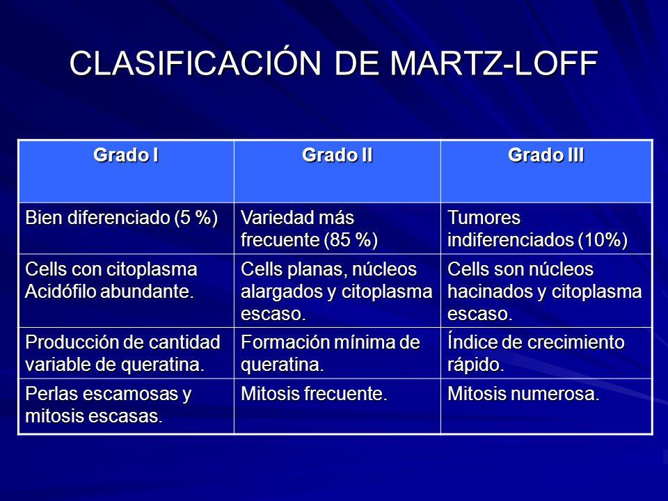 CLASIFICACIÓN DE MARTZ-LOFF