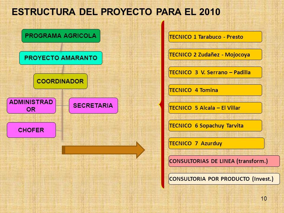 ESTRUCTURA DEL PROYECTO PARA EL 2010