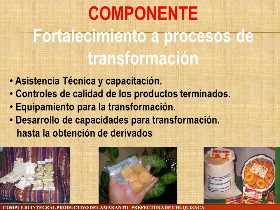 Fortalecimiento a procesos de transformación