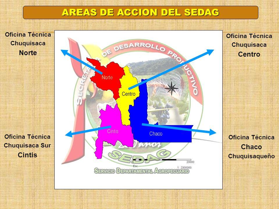 AREAS DE ACCION DEL SEDAG