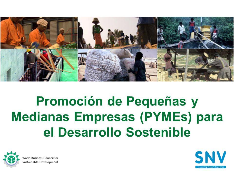 Promoción de Pequeñas y Medianas Empresas (PYMEs) para el Desarrollo Sostenible