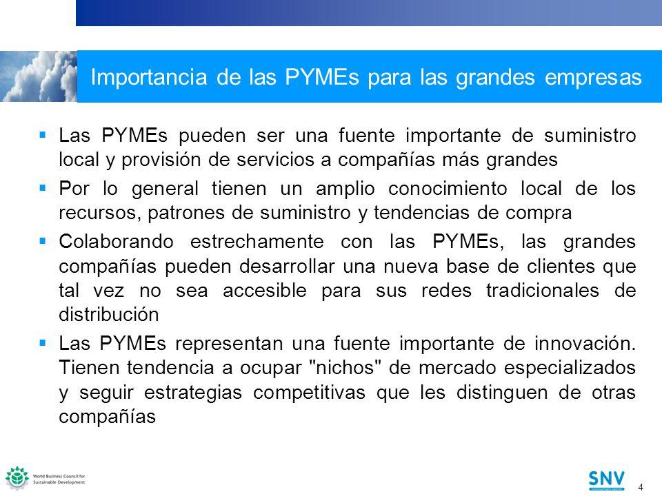 Importancia de las PYMEs para las grandes empresas