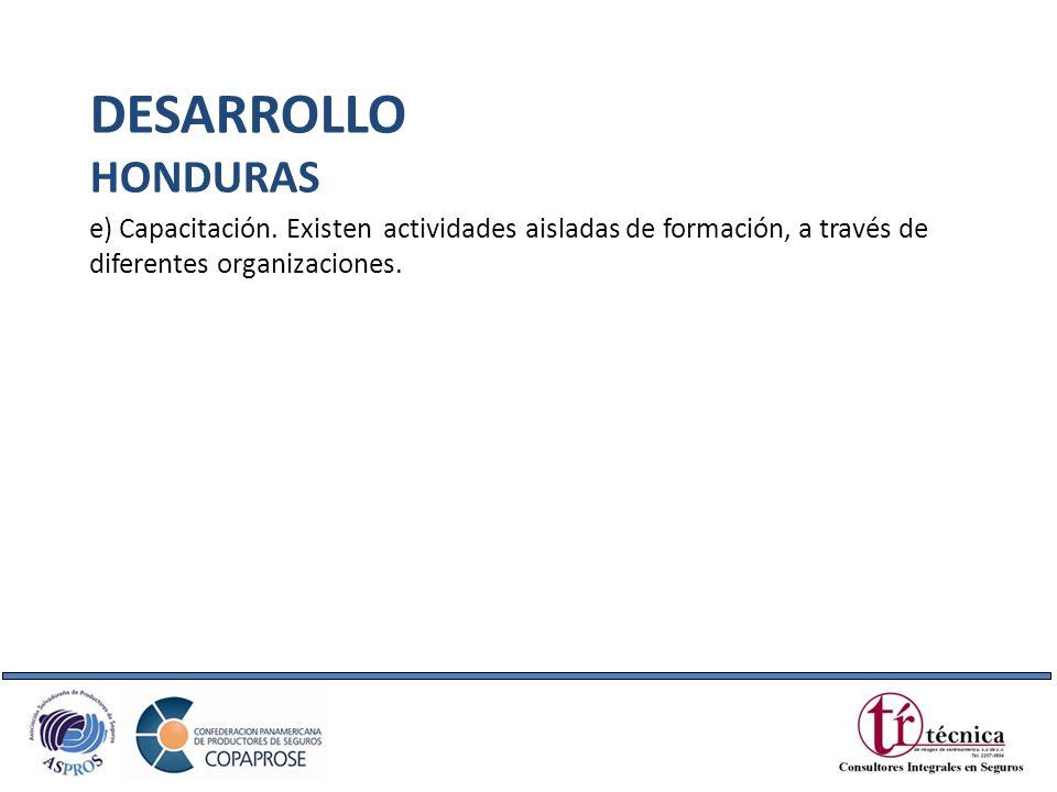 DESARROLLO HONDURAS. e) Capacitación.