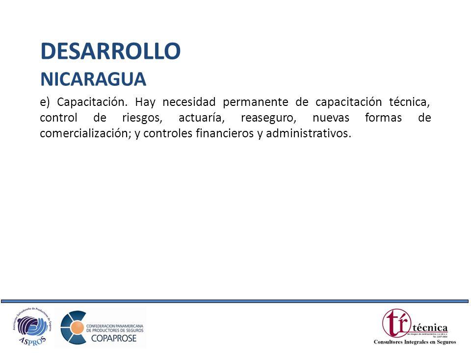 DESARROLLO NICARAGUA.