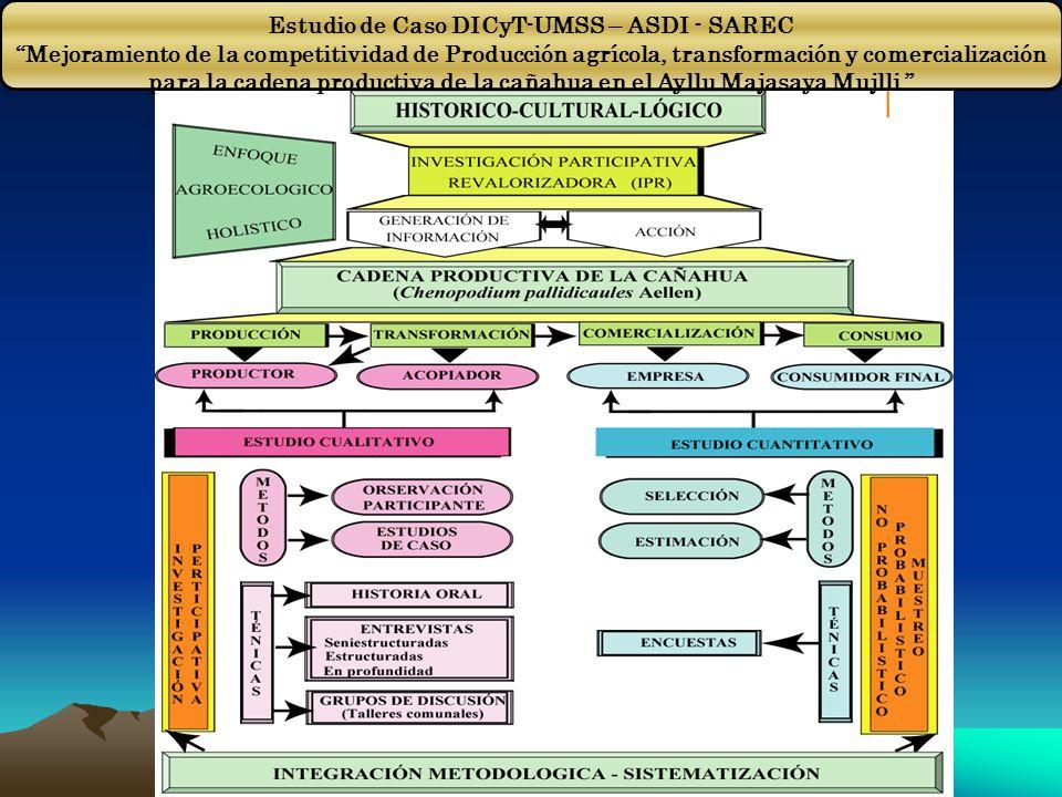 Estudio de Caso DICyT-UMSS – ASDI - SAREC