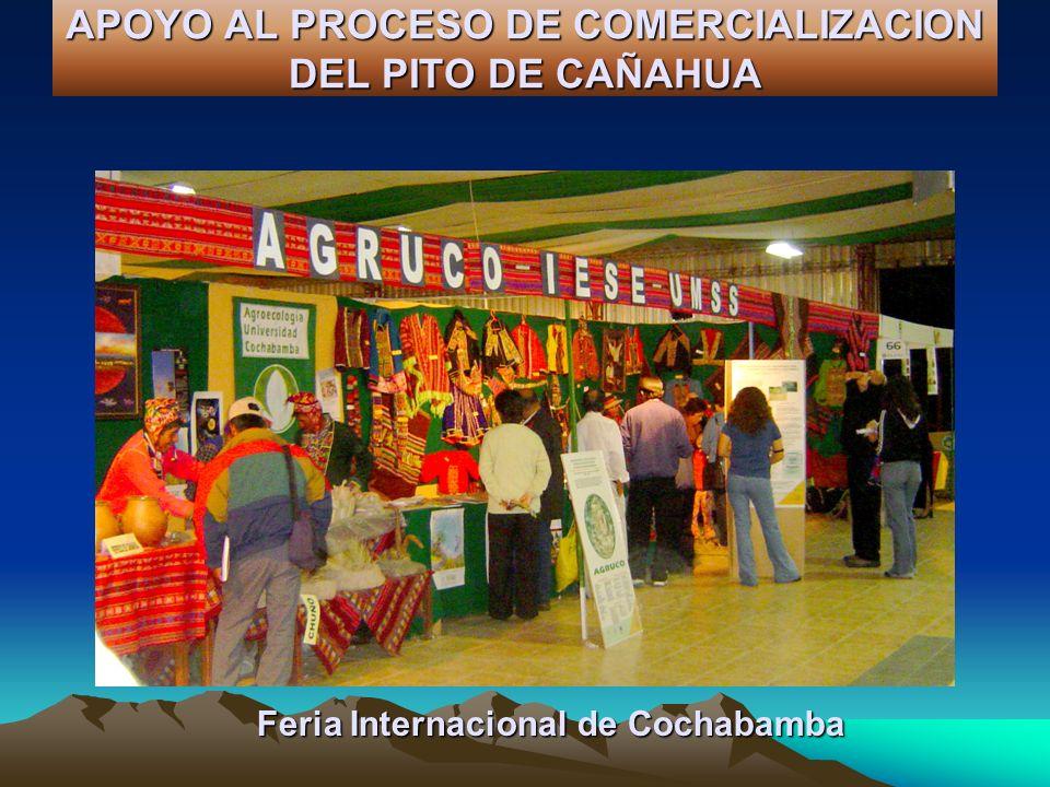 APOYO AL PROCESO DE COMERCIALIZACION DEL PITO DE CAÑAHUA