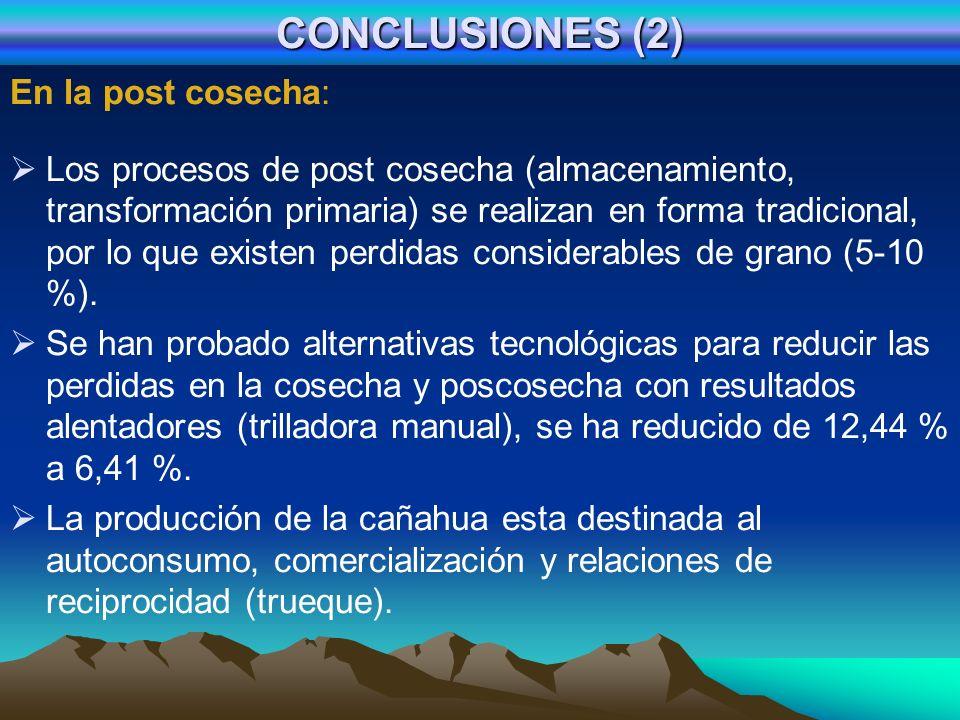 CONCLUSIONES (2) En la post cosecha: