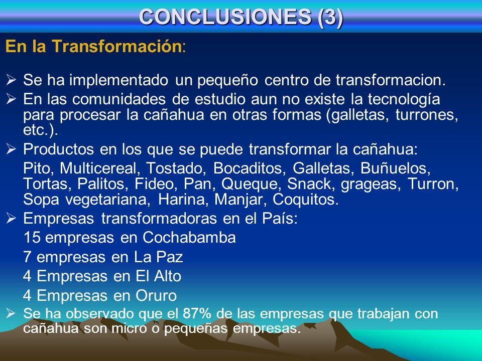 CONCLUSIONES (3) En la Transformación: