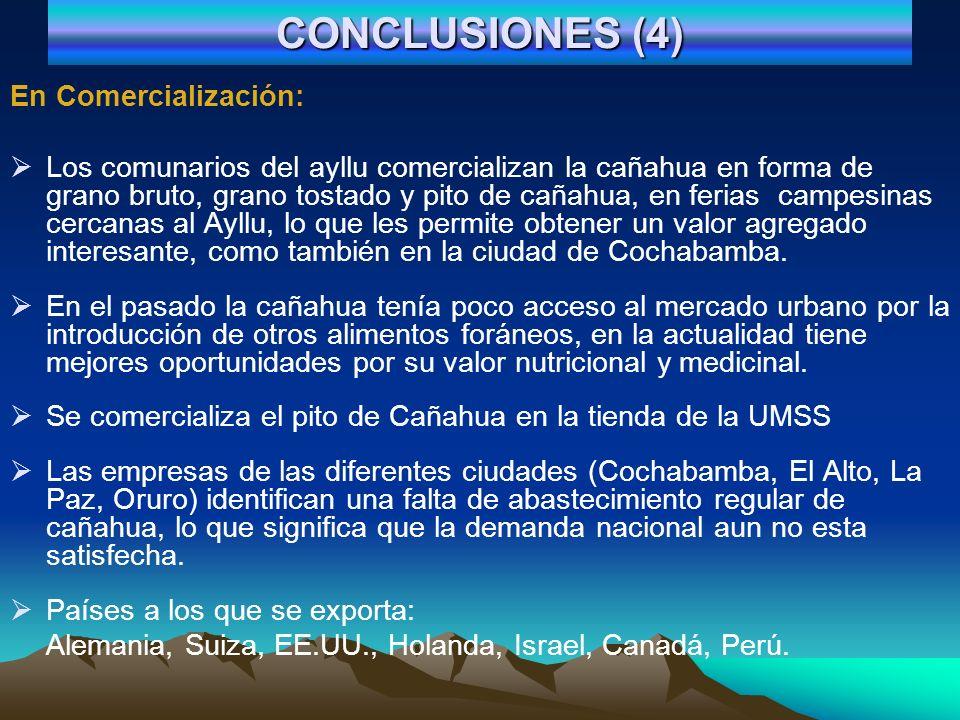 CONCLUSIONES (4) En Comercialización: