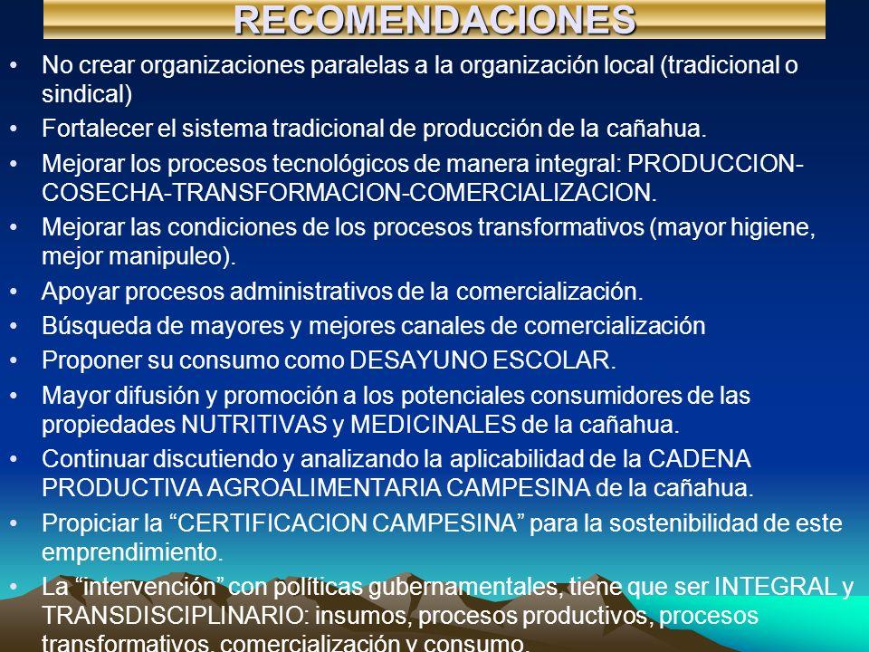 RECOMENDACIONES No crear organizaciones paralelas a la organización local (tradicional o sindical)