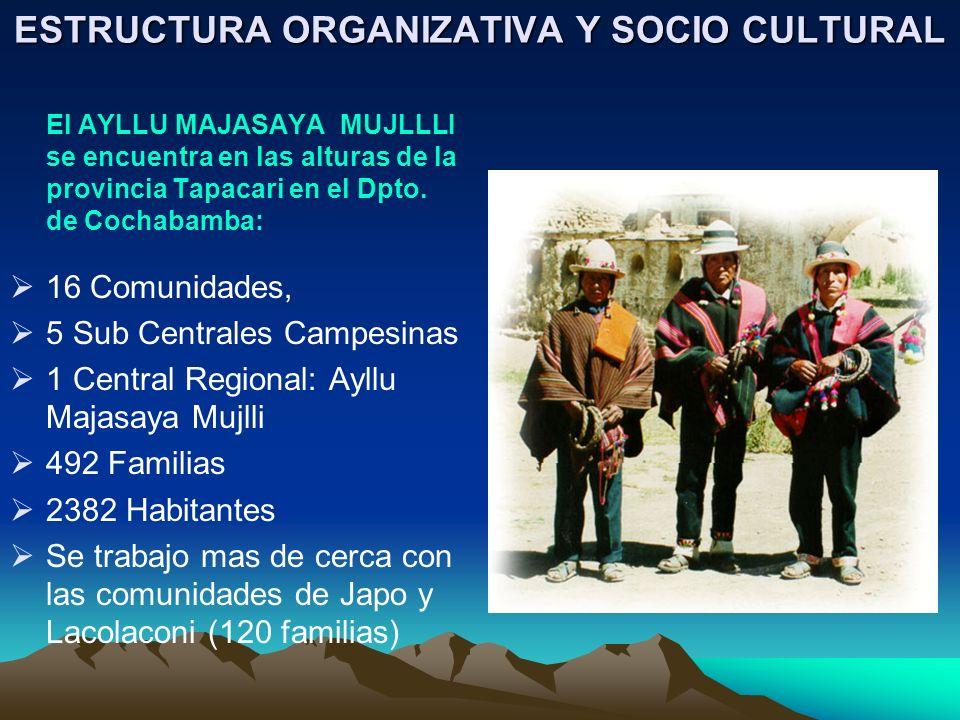 ESTRUCTURA ORGANIZATIVA Y SOCIO CULTURAL