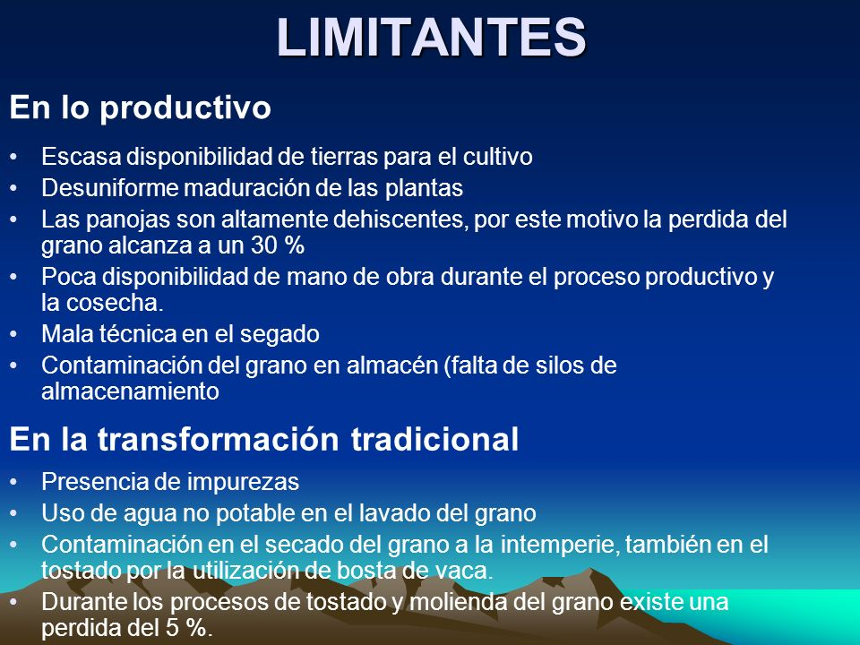 LIMITANTES En lo productivo En la transformación tradicional