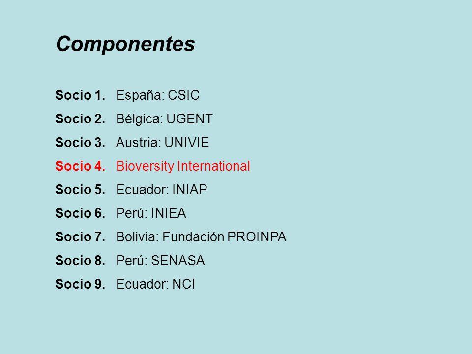 Componentes Socio 1. España: CSIC Socio 2. Bélgica: UGENT