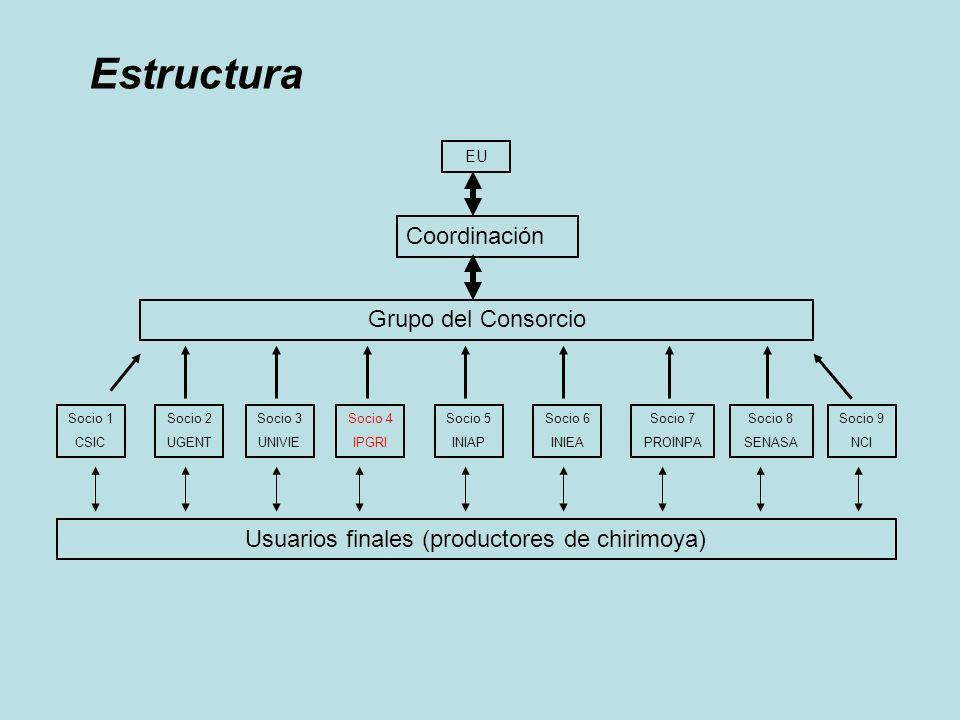 Usuarios finales (productores de chirimoya)