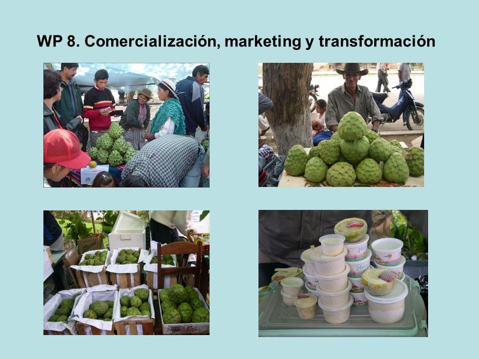 WP 8. Comercialización, marketing y transformación