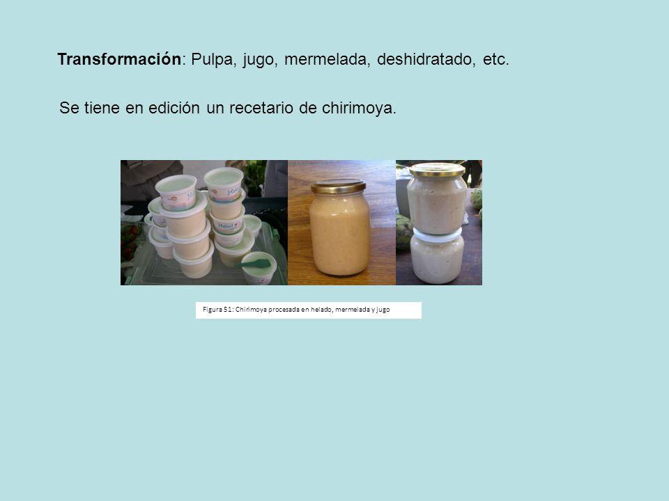 Transformación: Pulpa, jugo, mermelada, deshidratado, etc.