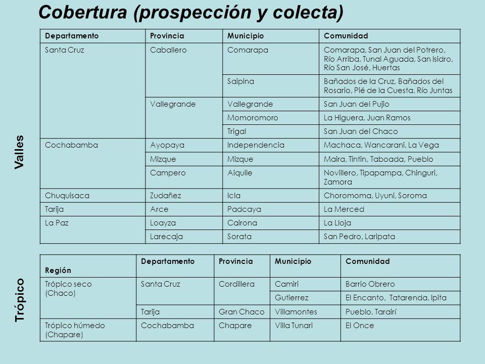 Cobertura (prospección y colecta)