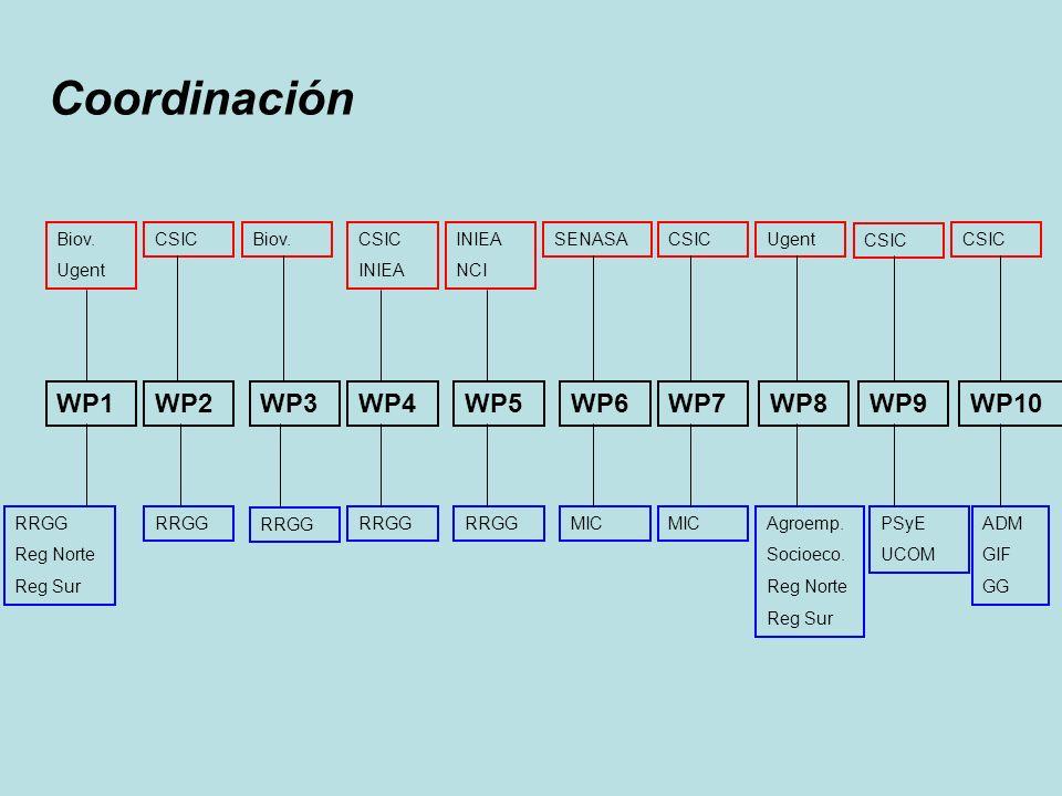 Coordinación WP1 WP2 WP3 WP4 WP5 WP6 WP7 WP8 WP9 WP10 RRGG Reg Norte