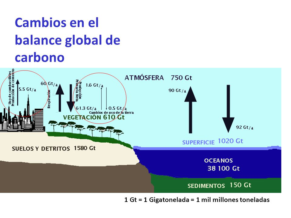 Cambios en el balance global de carbono