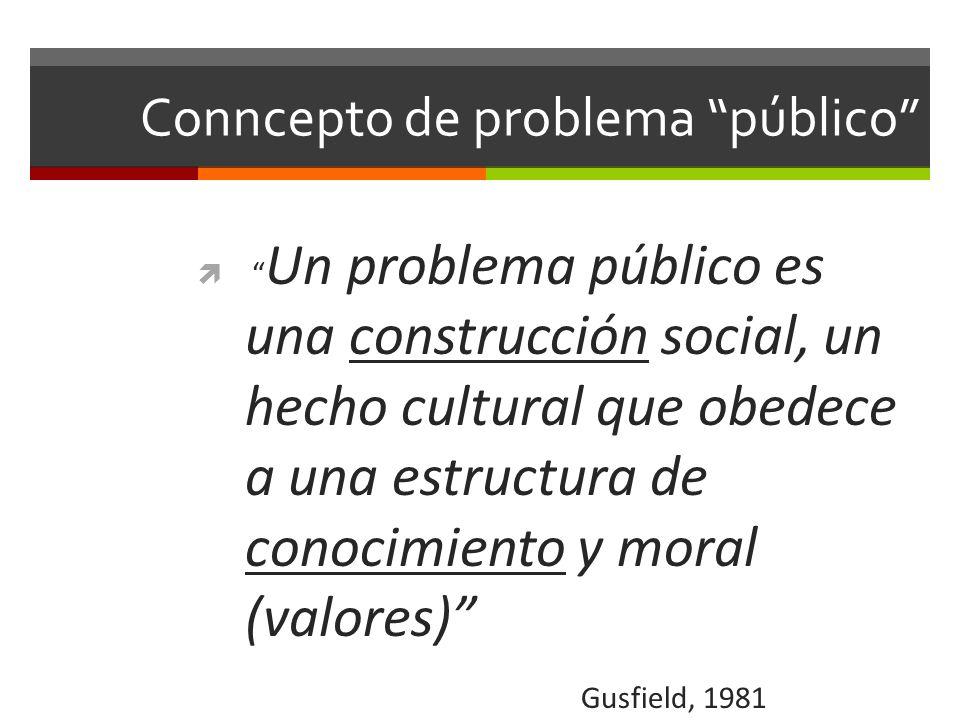 Conncepto de problema público
