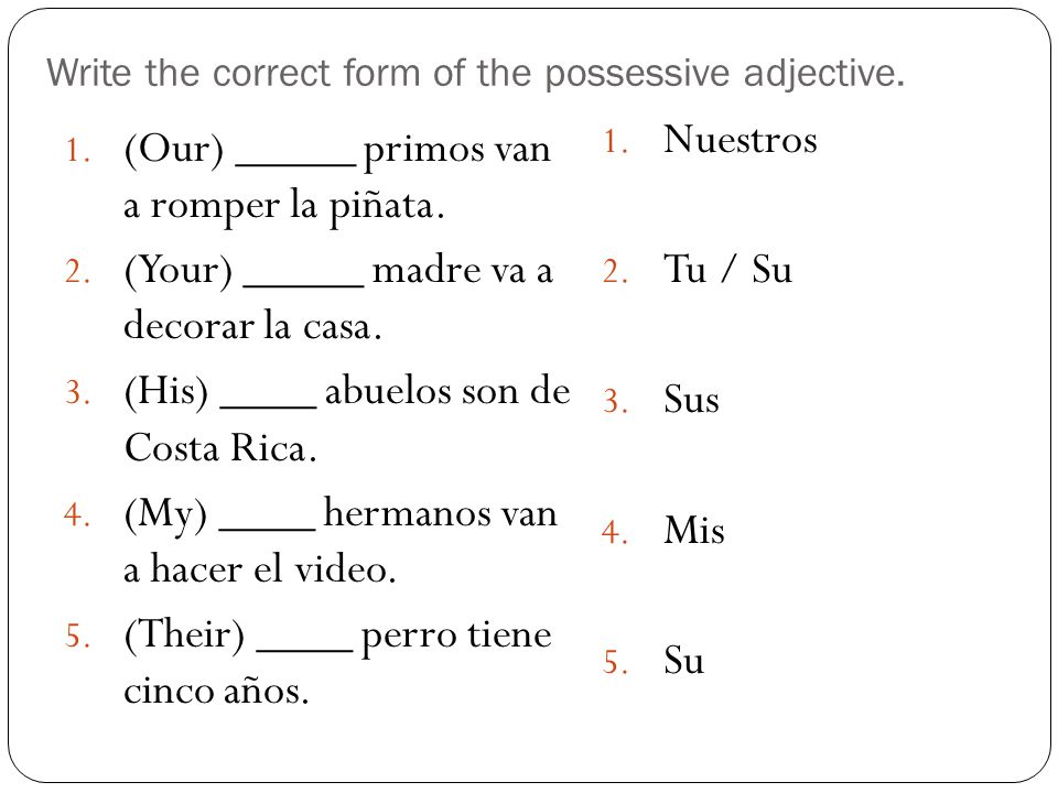 Write the correct form of the possessive adjective.