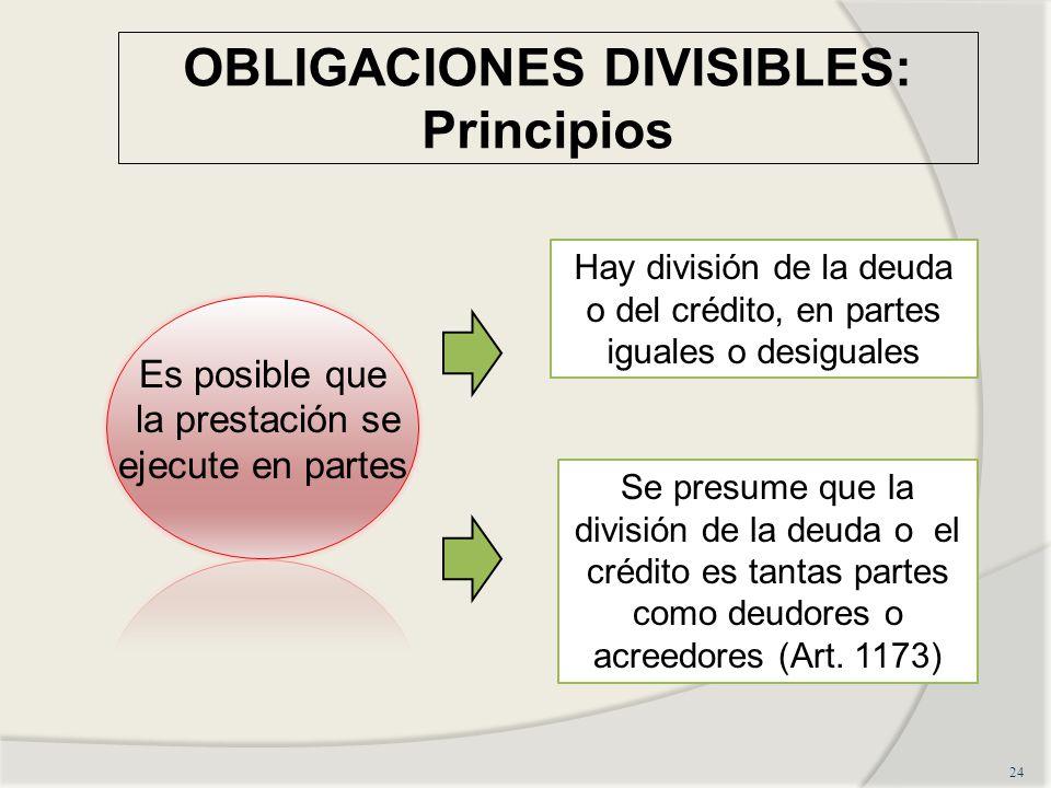 OBLIGACIONES DIVISIBLES: Principios