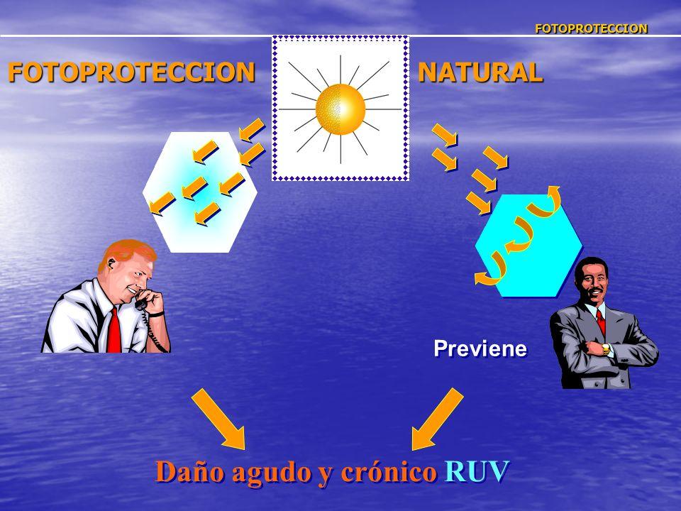 Daño agudo y crónico RUV