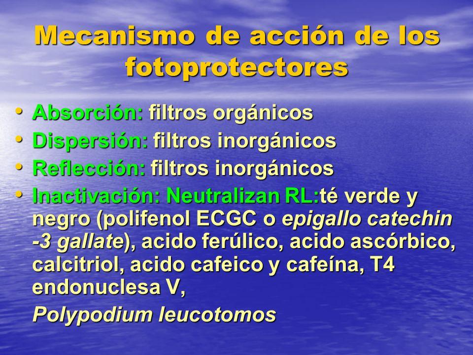 Mecanismo de acción de los fotoprotectores