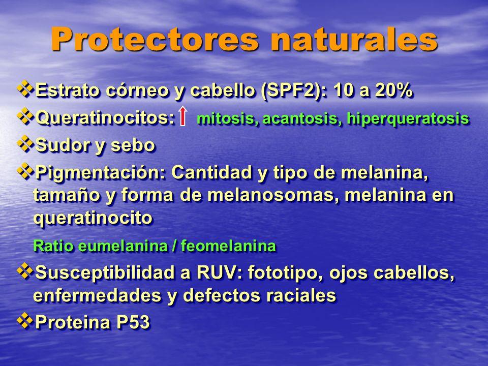 Protectores naturales